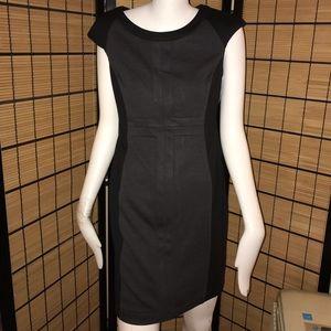 NWT Premise Dress. Size 6p